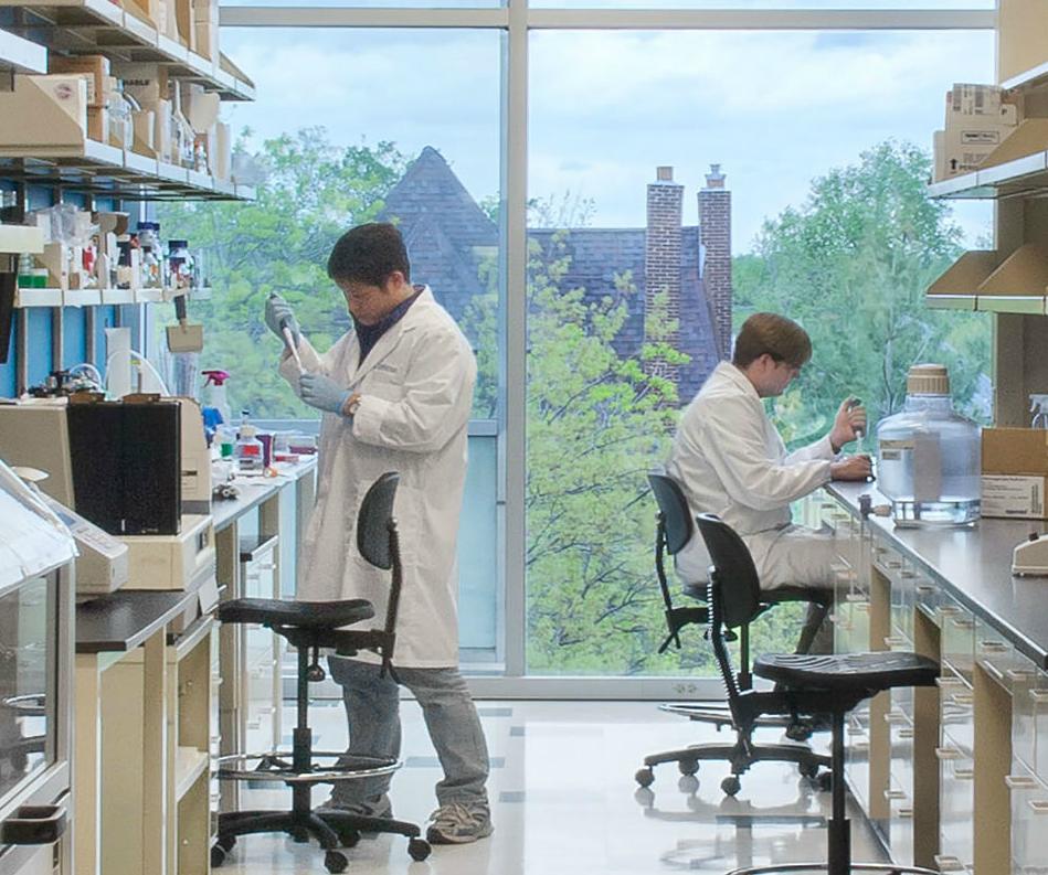 BioGenerator Lab