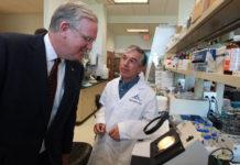 Dr. Juan Arhancet, Apse