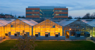 The Danforth Plant Center campus is a dense network of plant science experts with access to greenhouses, labs and acres of wildflowers. A plant scientist's paradise.